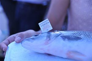 A Fonda Sea Bass
