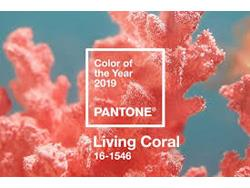 Pantone Names Living Coral Its 2019 Color of the Year